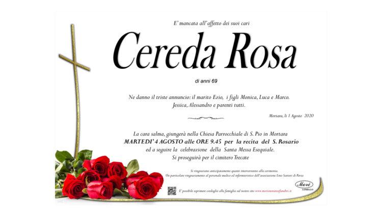 Rosa Cereda